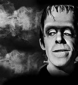 hermanmunster